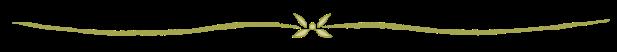 divider-line-2