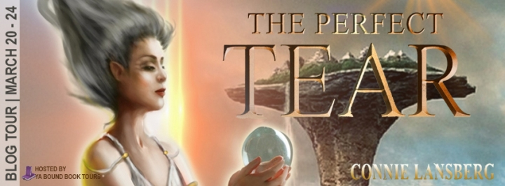 Book Review||The Perfect Tear by Connie Lansberg